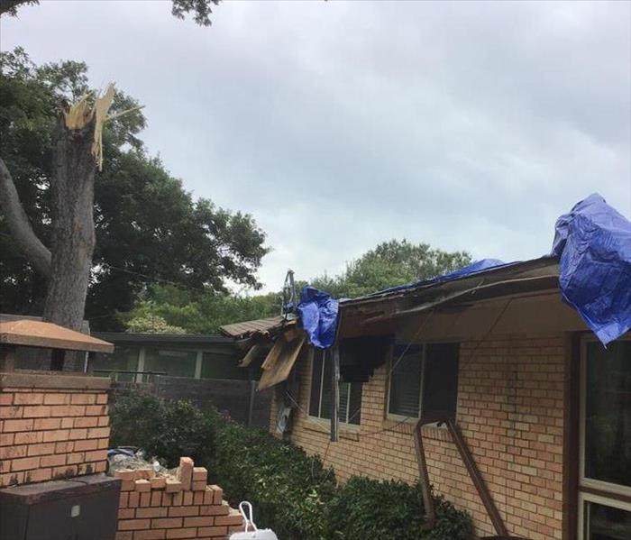 Fallen Tree on Roof During Storm