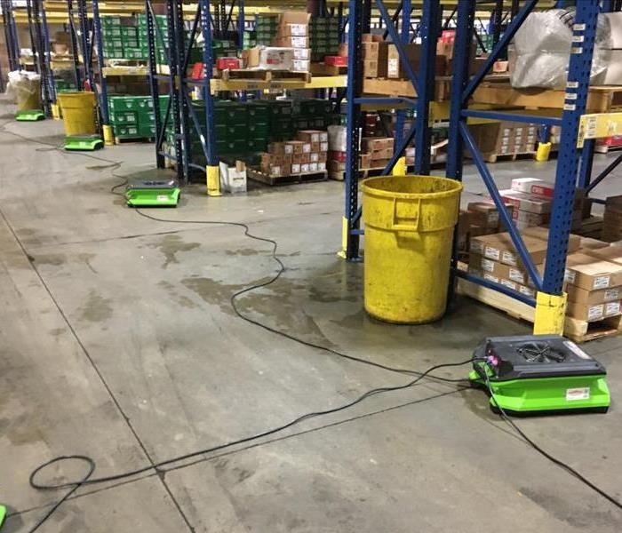 green drying equipment in warehouse